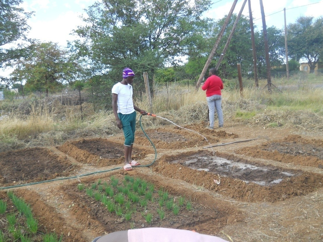 Picture: Garden in Radisele, Palapye sub district